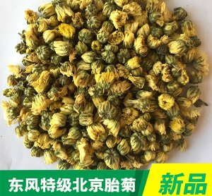 Special grade Beijing Chrysanthemum bud