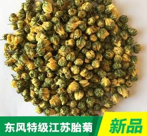 Special Grade Jiangsu Chrysanthemum bud