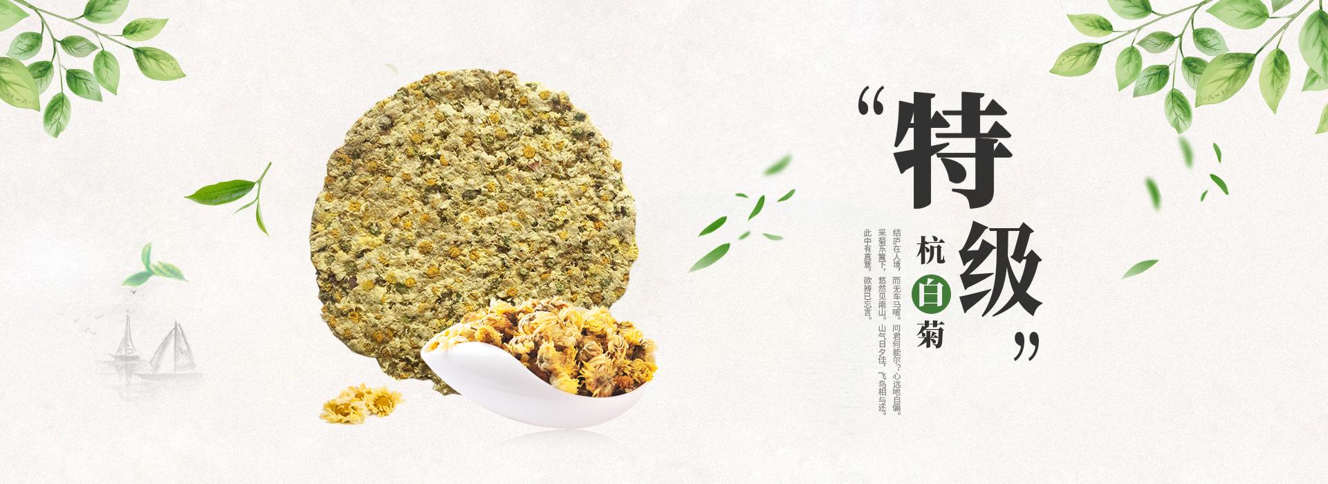 特级杭白菊